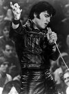 Elvis Presley Leather Suit - 35 Colors